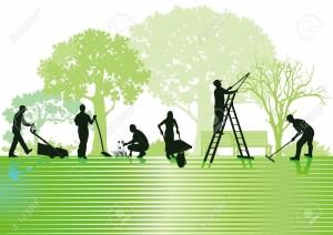 19447100-Gardening-and-garden-maintenance-Stock-Vector-lawn